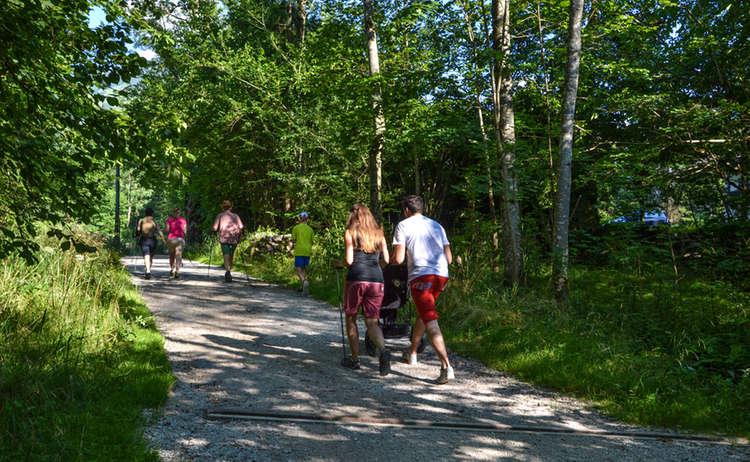 Schattige Wanderung auf dem Königsseer Fußweg