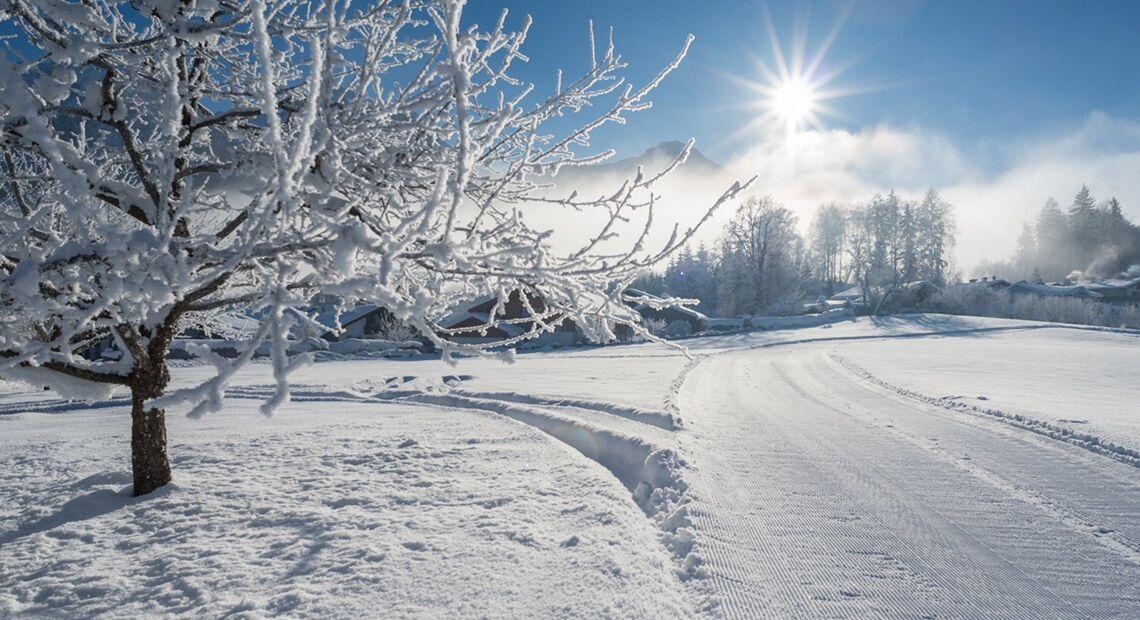 Winter Schoenauakoenigssee